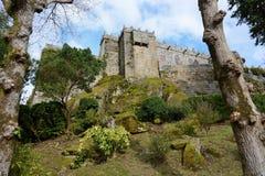 Castello di Soutomaior, Pontevedra, Galizia, Spagna Fotografia Stock Libera da Diritti