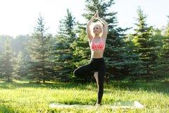Foto di yoga di pratica della giovane donna riccio-dai capelli di sport sulla coperta in parco Fotografia Stock Libera da Diritti