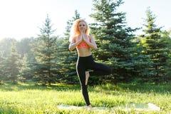 Foto di yoga di pratica della giovane donna riccio-dai capelli di sport sulla coperta in parco Fotografia Stock