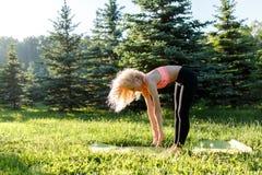 Foto di yoga di pratica della giovane donna riccio-dai capelli di sport sulla coperta in parco Fotografie Stock