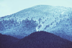 Foto die een mooie humeurige ijzige landschaps Europese alpi afschilderen Stock Foto