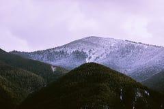 Foto die een mooie humeurige ijzige landschaps Europese alpi afschilderen Stock Afbeeldingen
