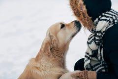 Foto die van Labrador poot geven aan vrouw in zwart jasje op de winter stock fotografie