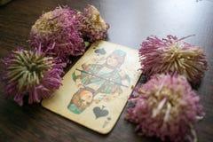 Foto do cartão de tarô Fotografia de Stock Royalty Free