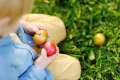 Foto do close-up da caça do rapaz pequeno para o ovo da páscoa no parque da mola no dia da Páscoa Fotografia de Stock Royalty Free