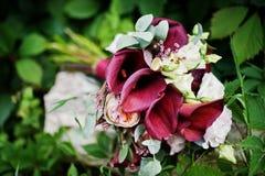 Foto do close-up de um ramalhete do casamento feito do lilie roxo do calla fotos de stock royalty free