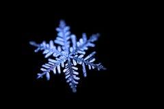 A foto do floco de neve em um fundo preto Imagens de Stock