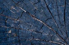 Foto do fundo e da textura da madeira fotos de stock