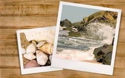 Foto do mar e moluscos no verão Fotos de Stock