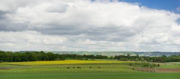 Foto do panorama do prado Fotos de Stock