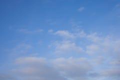 Foto do quadrocopter da floresta conífera no verão fotos de stock royalty free