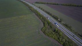 Foto do quadrocopter da floresta conífera no verão imagens de stock royalty free