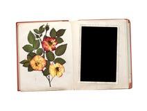 A foto do vintage, livro velho e seca flores cor-de-rosa imagem de stock
