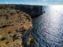 Foto do zangão - uma mulher sobre os penhascos da ilha de Comino, Malta imagem de stock royalty free