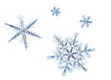 A foto dos flocos de neve em um fundo branco Imagens de Stock Royalty Free