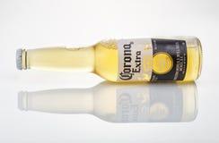 Foto editorial de la botella de cerveza de Corona Extra con la reflexión Imágenes de archivo libres de regalías