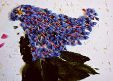 Foto een meisje van bloemenbloemblaadjes, Royalty-vrije Stock Fotografie