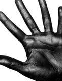 Foto einer farbigen Hand Stockfotografie