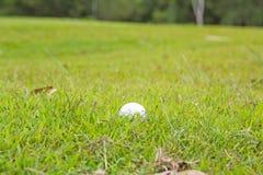 Foto eines Golfballs, der im rauen Gras liegt Lizenzfreies Stockfoto