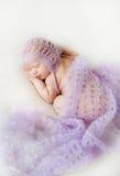 Foto eines neugeborenen Babys kräuselte auf einer Decke oben schlafen Stockfotografie