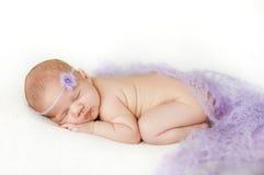 Foto eines neugeborenen Babys kräuselte auf einer Decke oben schlafen Stockbild