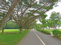 Foto eingelassenes Singapur Ostküsten-Park Singapur lizenzfreies stockfoto