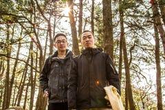 Foto en el bosque foto de archivo