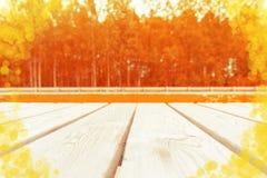 Foto entonada del fondo de madera de la tabla en el bosque de la caída Foto de archivo libre de regalías