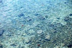 Foto för havsbotten Royaltyfria Bilder