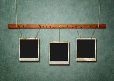 Foto-Felder auf Grün gemasert Lizenzfreie Stockbilder