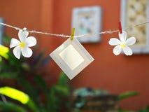 Foto-Felder auf Seil mit Blume Hintergrund die Natur Stockbilder