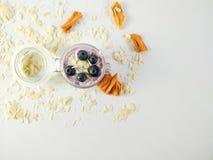 Foto fr?n ovann?mnt av en handgjord bl?b?ryoghurt som dekoreras med mandlar och den torkade mango i exponeringsglaskrus, med vitt royaltyfria foton