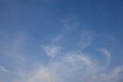 Foto från quadrocopteren av barrskogen i sommar arkivfoto