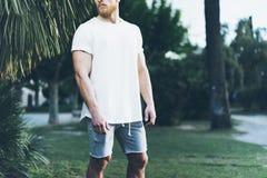 Foto Gebaarde Spiermens die Witte Lege t-shirt en borrels in de zomertijd dragen Groene Boompalm, Vage Achtergrond Royalty-vrije Stock Foto's
