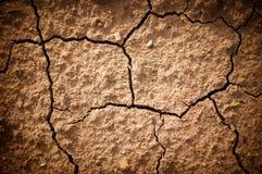 Foto gebarsten aarde in een droog terrein Stock Fotografie