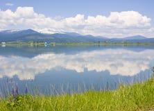 Reflexão do rio do Pend Oreille das nuvens, das montanhas de Selkirk e do Lupine ocidental Imagem de Stock