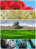 Foto iconiche del fondo della natura della Nuova Zelanda Fotografie Stock