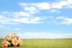 Foto-ilustración de rosas Imagen de archivo libre de regalías