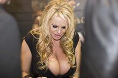 Foto Kelly Madison del convenio de los AVN imágenes de archivo libres de regalías