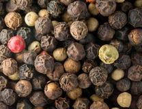 Foto macra de los gérmenes mezclados del grano de pimienta imagenes de archivo