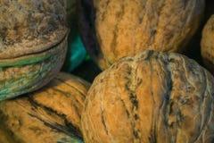 Foto macra Nuts fotografía de archivo libre de regalías