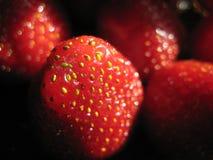 Foto macro com fundo decorativo de bagas vermelhas brilhantes da morango Fotografia de Stock