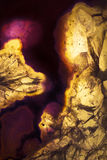 Foto macro de uma fatia amarela e roxa da rocha da ágata Fotografia de Stock Royalty Free