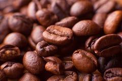 Foto macro dos grãos de café Imagens de Stock