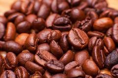 Foto macro dos grãos de café Fotos de Stock