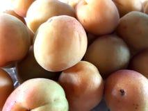 Foto madura del fondo de los albaricoques de las frutas fotos de archivo