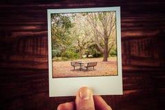 Foto maschio della polaroid della tenuta della mano della scena di autunno - picnic vuoto Immagini Stock