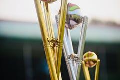 Foto metálica del objeto del trofeo de los deportes de las crestas fotografía de archivo