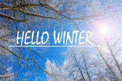 Foto mit Texthallo Winter Russland, UralJanuary, Temperatur -33C Fahne mit Text Hallo Winter Winter stockbilder