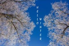 Foto mit Texthallo Winter Russland, UralJanuary, Temperatur -33C Fahne mit Text Hallo Winter Winter stockfoto